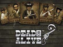 Активируйте игровой автомат Dead Or Alive